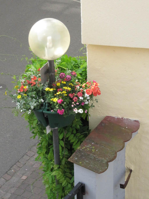 Spende Blumenschale - Blumen