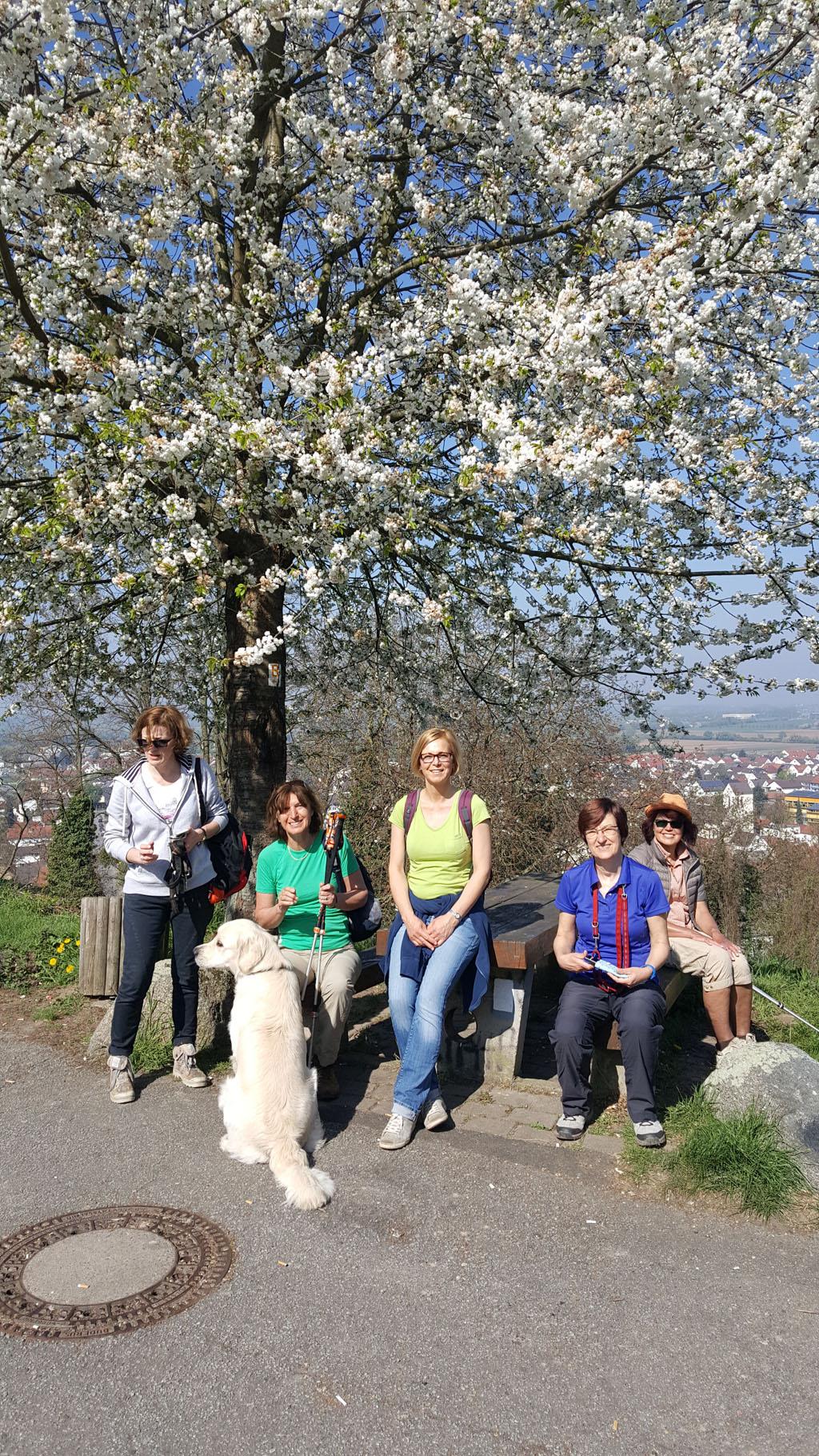 Wandern - 9 April